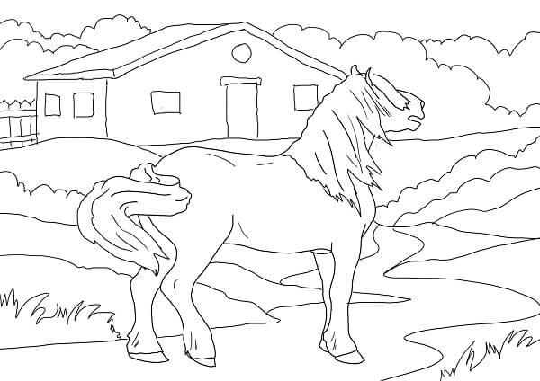 Dibujos de caballos en Campo para pintar