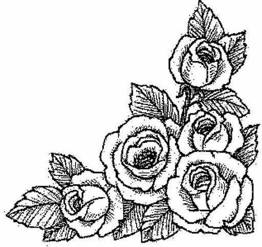 Dibujos de Rosas para Bordar