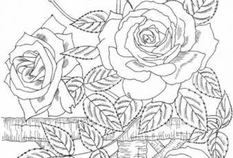 Dibujos de Rosas para calcar bordados
