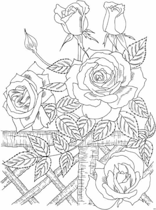 Dibujos De Rosas Para Calcar Bordados Dibujos Para Pintar