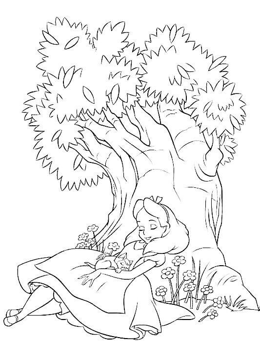 dibujo alicia y el pais de la maravillas