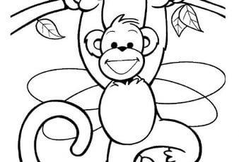 Dibujos de Monos para pintar y Colorear Gratis
