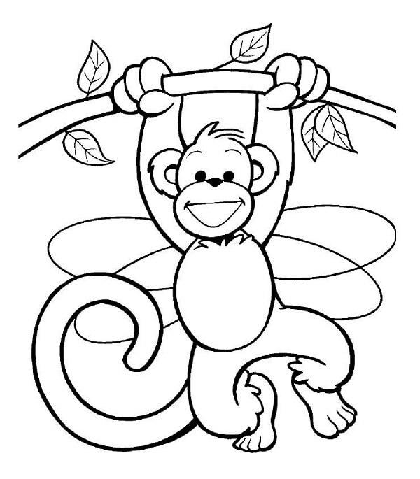 Dibujos de Monos para pintar y Colorear Gratis - Imágenes para Pintar