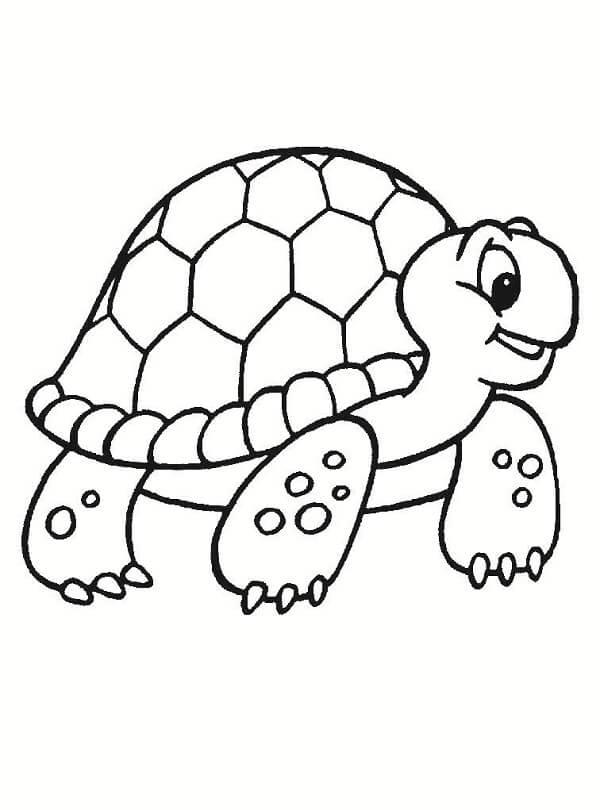 Dibujos de tortugas para pintar y colorear gratis - Dibujos naif para pintar ...